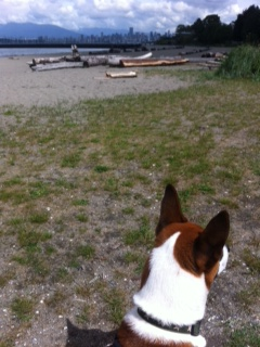 Friday Favorite: Jericho Beach